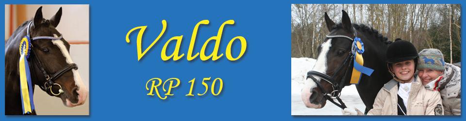 Valdo RP 150